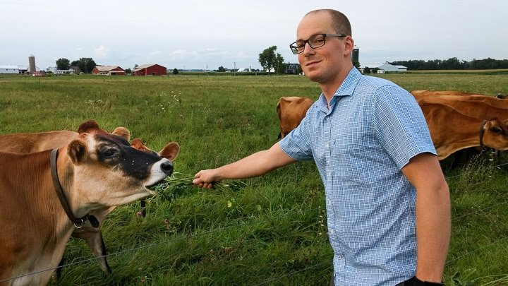 Alex with Jersey cows