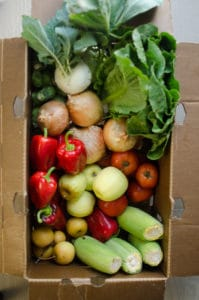 A look at our CSA box with many other goodies.
