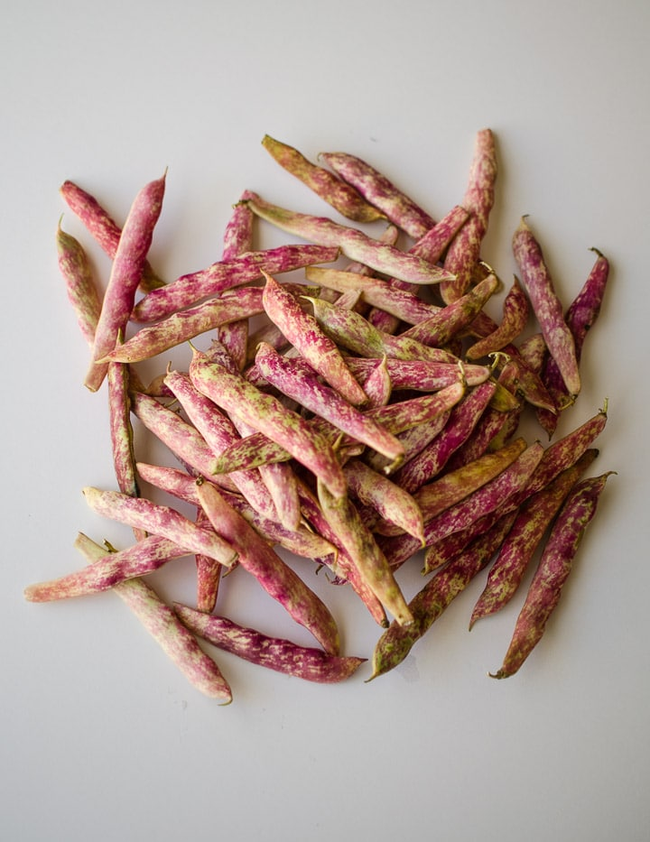 Cranberry beans on a white background