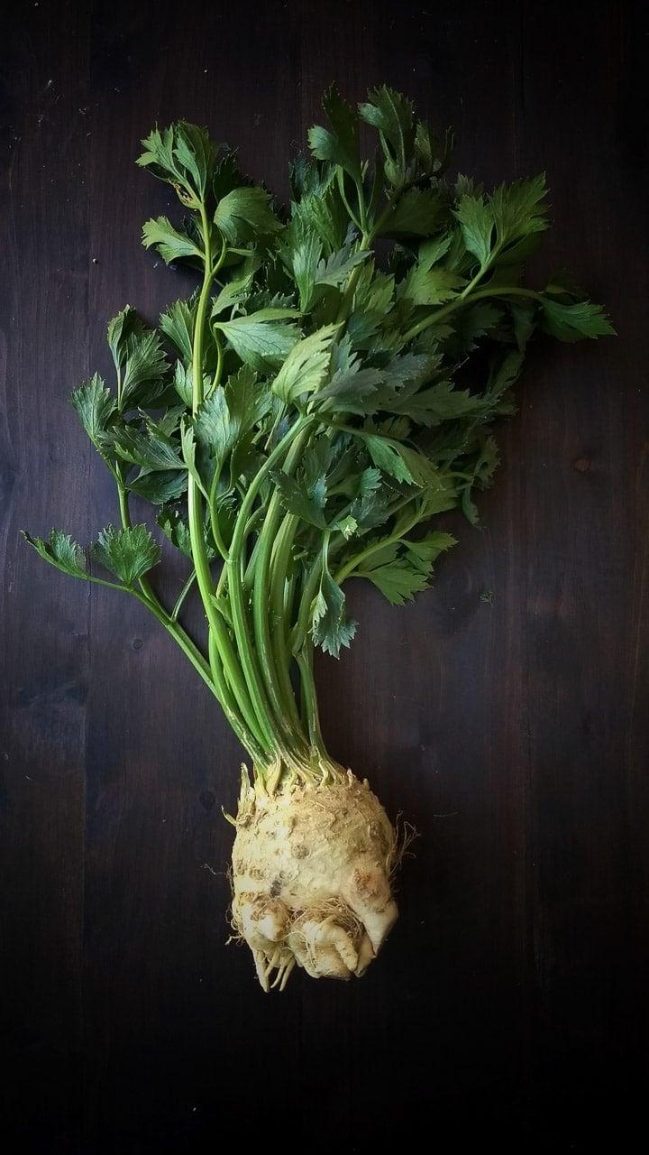 celeriac root picture