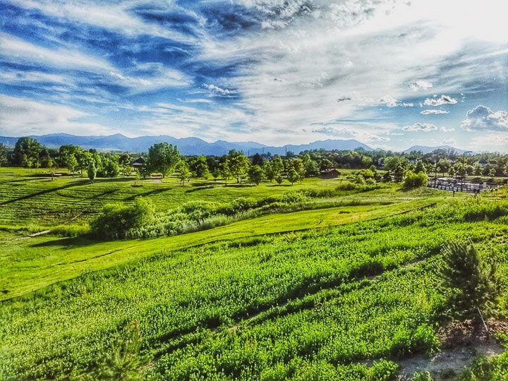 Beautiful landscape photo of a park with bright skies and green fields in Louisville, CO