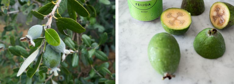 Feijoa whole and cut open on a marble background