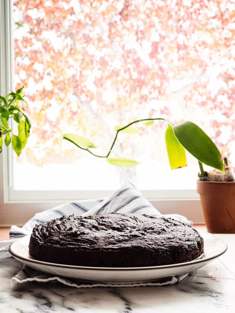 A silken tofu chocolate cake in front of a window with a tree in the background