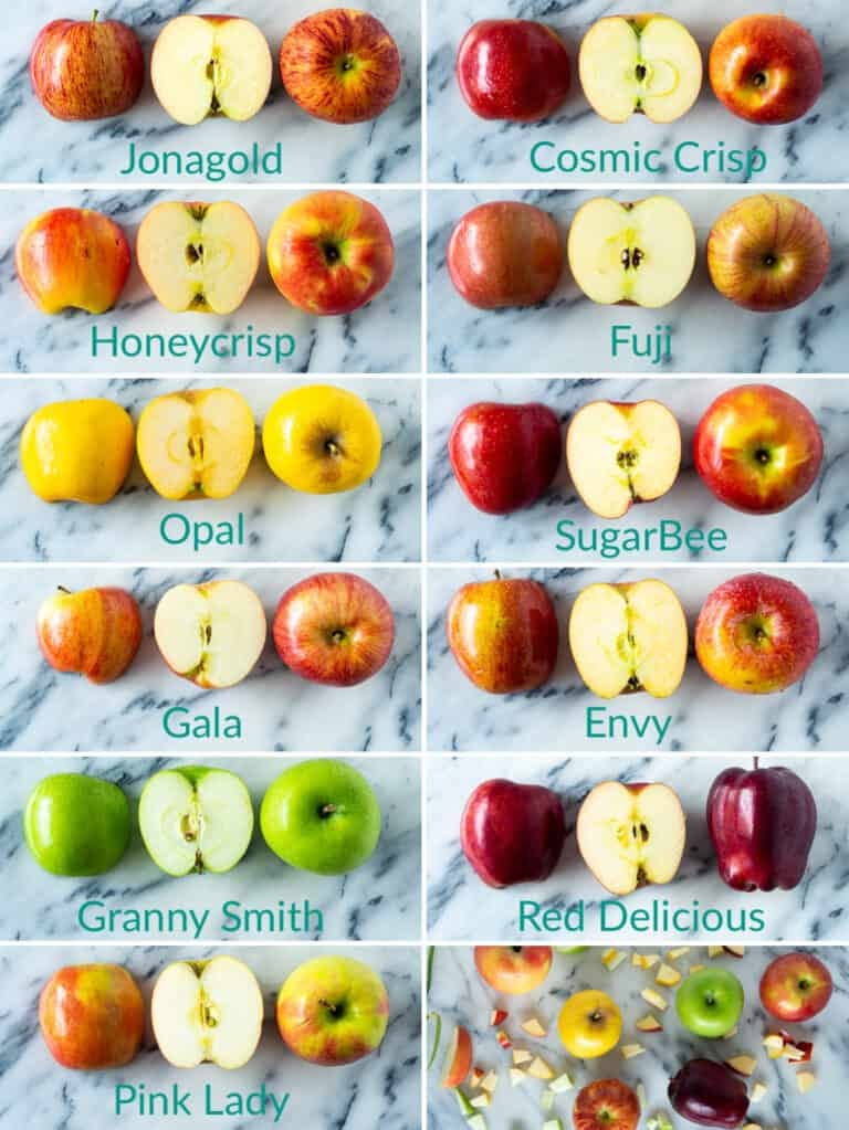11 different varieties of apples compared side-by-side