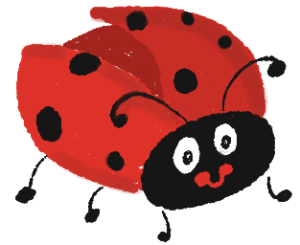 Ladybird Bug. Illustration from garlicdelight.com.