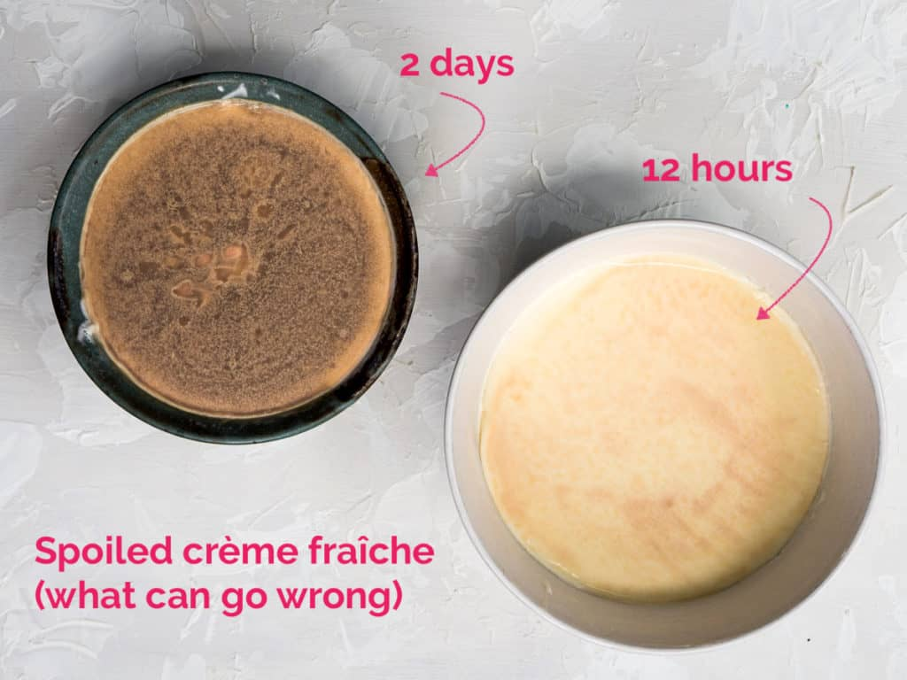 Spoiled crème fraîche with moldy on the top