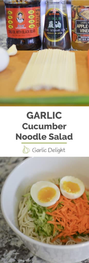 Garlic Cucumber Noodle Salad -- Spicy, Garlicky cold noodles topped with cucumber and carrot make a refreshing snack and side dish. | garlicdelight.com