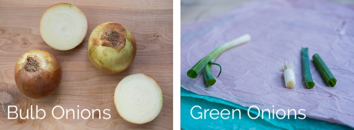 Side-by-side view of whole bulb onions, sliced bulb onions, and sliced green onions to show the comparison