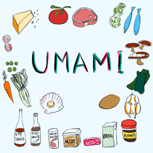 Umami illustration with different ingredients rich in glutamate