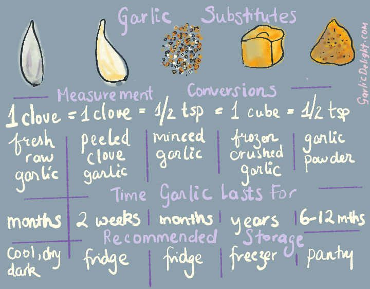 A hand-illustrated chart with garlic substitute measurement conversions, time garlic lasts for, and recommended storage
