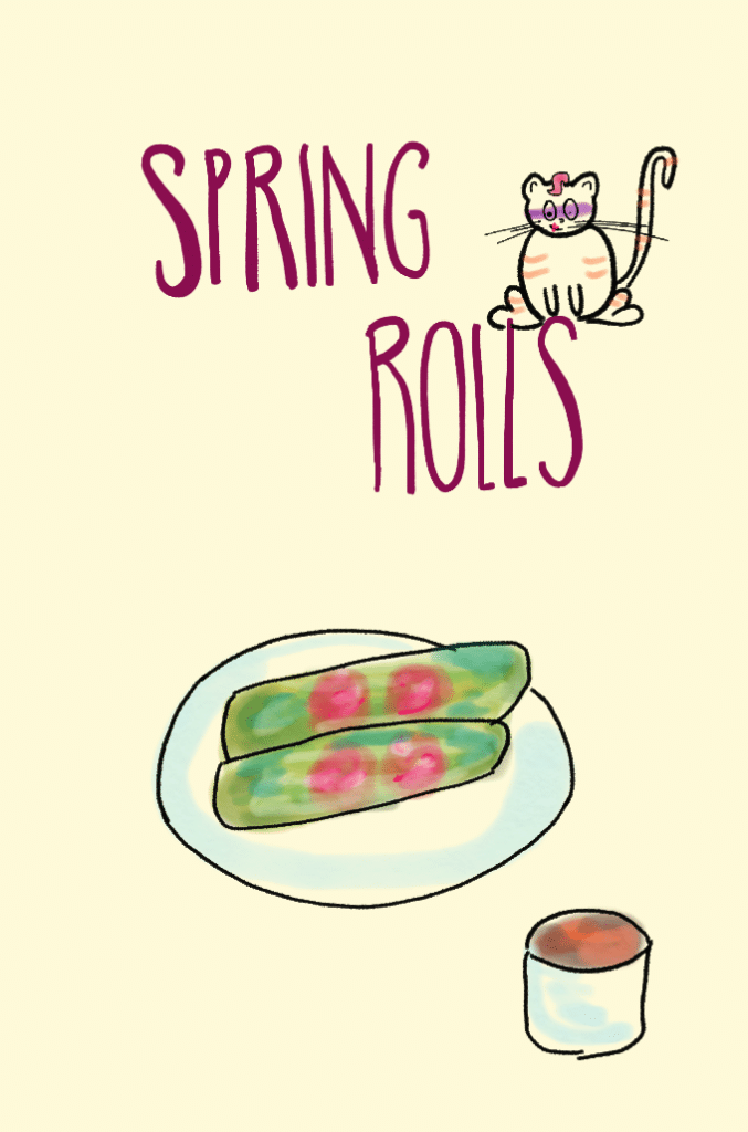 spring rolls feature image with bandit kitty